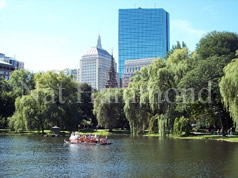 Swanboats in the Boston Public Garden